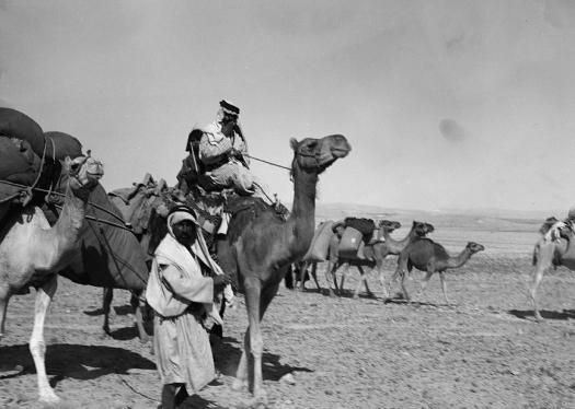 camel train, Middle East, Palestine, Egypt, Abraham, Genesis 24, Isaac